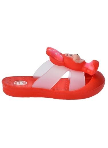 Kiko Kids Kiko Akn E238.000 Plaj Havuz Banyo Kız/Erkek Çocuk Sandalet Terlik Kırmızı